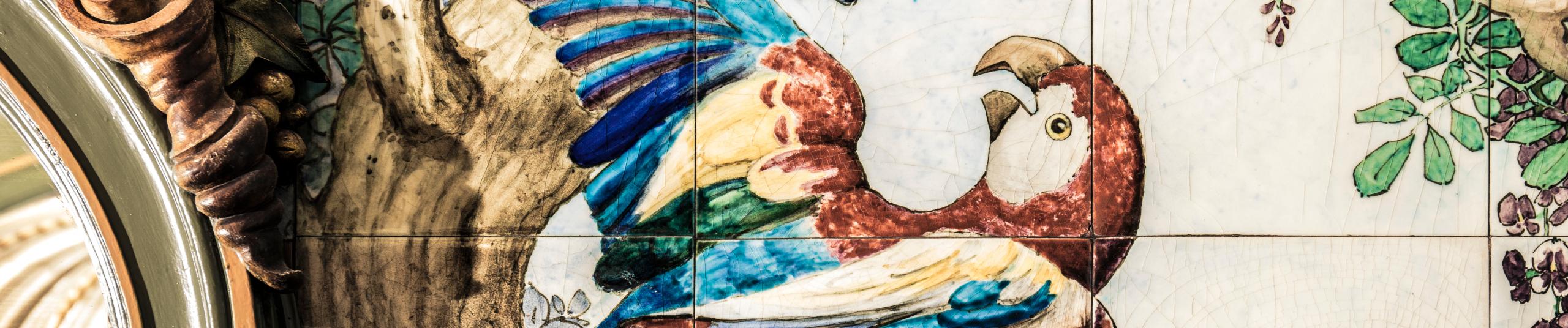 L'Île aux oiseaux-serpents – Teaser du spectacle